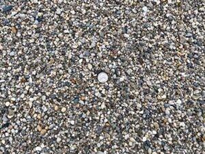 washed-pea-gravel-fill-local-aggregates--green-stone-natural-stone-landscape-supplier
