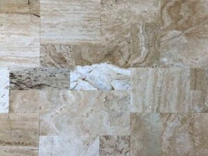 timber-travertine-patio-pool-deck-stone-patterned-natural-stone-supplier-greenstone-hardscape-supply